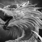 夢に龍が出て来た方へのスピリチュアルメッセージ