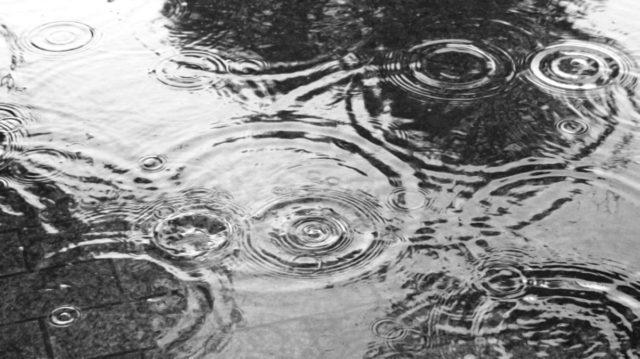 雨の波紋 水たまり
