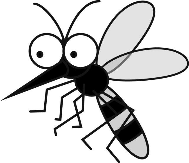 蚊 イラスト
